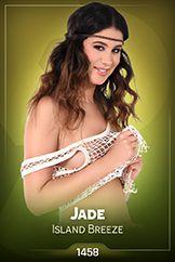 Jade / Island Breeze