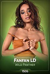 Fanfan LD / Wild Panther